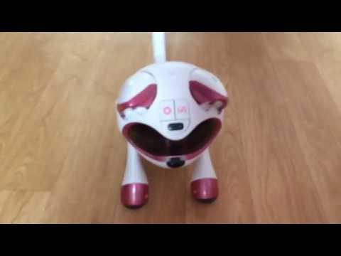tekno robotic kitty instructions