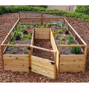 keter easy growing instructions